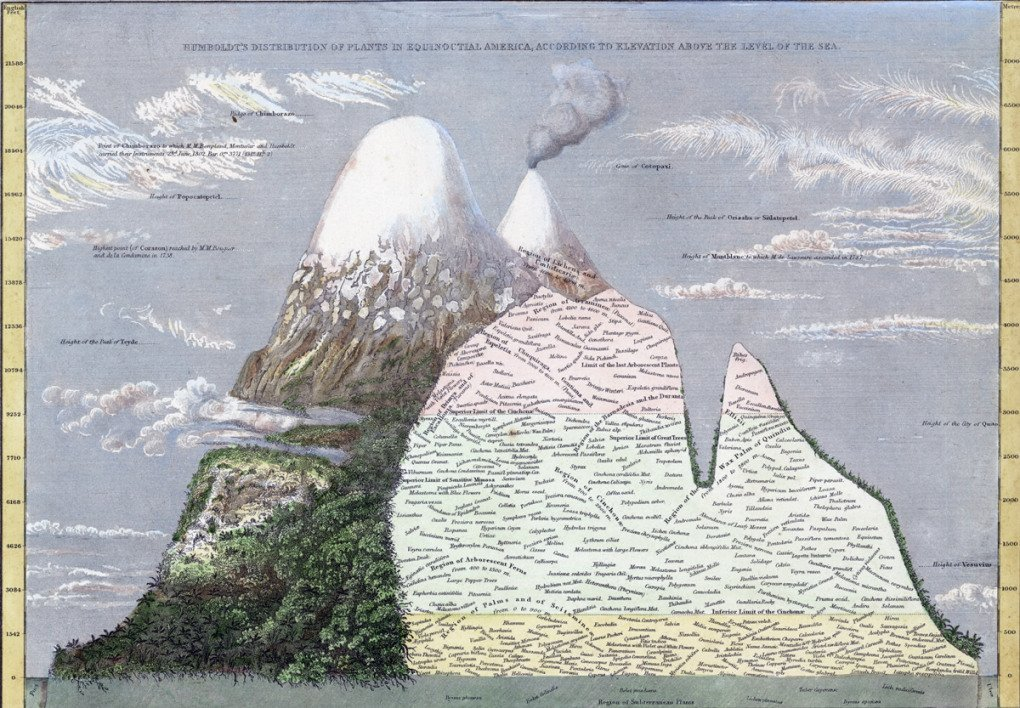 Cartographic Grounds Projective Landscapes