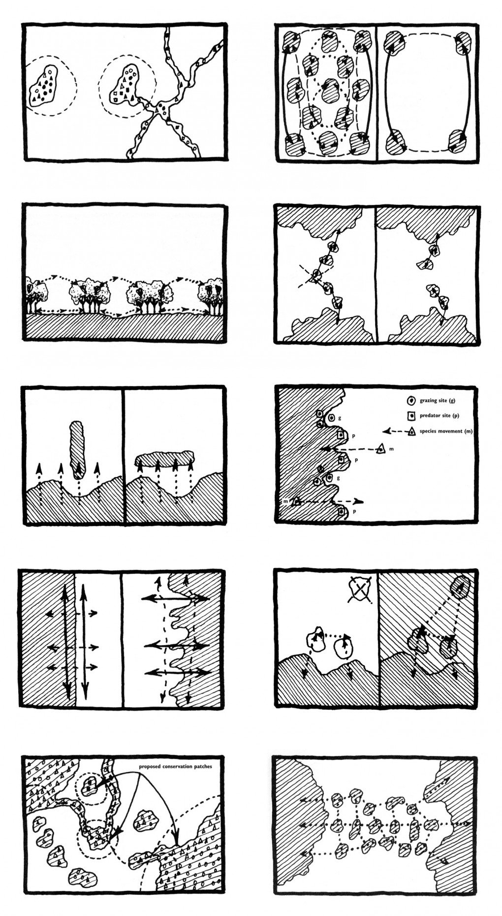 Wenche E. Dramstad, James D. Olson and Richard T.T. Forman, Movement diagrams: Patches, Edges, Corridors, Mosaics, from Landscape Ecology Principles in Landscape Architecture and Land-Use Planning, 1996.
