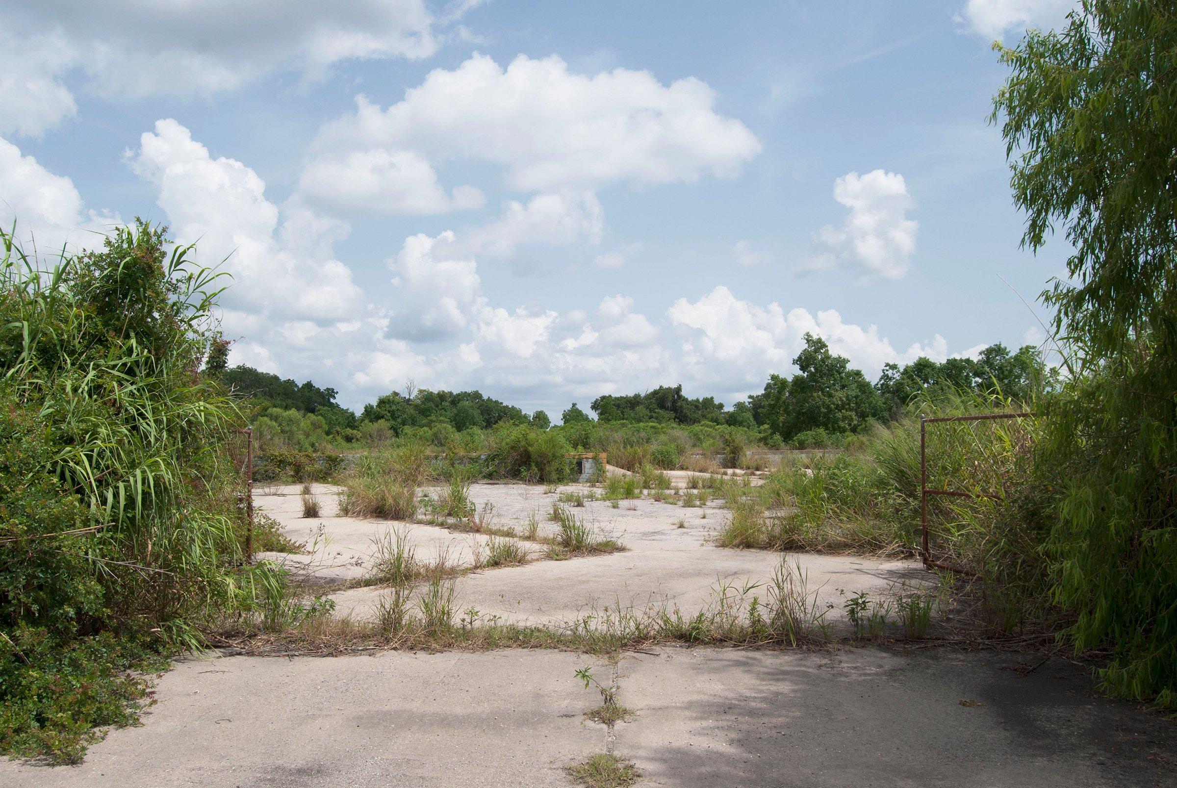 Backwater landscapes of the mississippi delta for Mississippi landscape architects