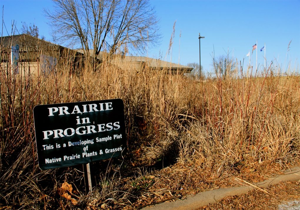 Sign reads 'Prairie in Progress' at Cahokia Mounds