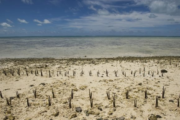 Climate Change Effects in Island Nation of Kiribati