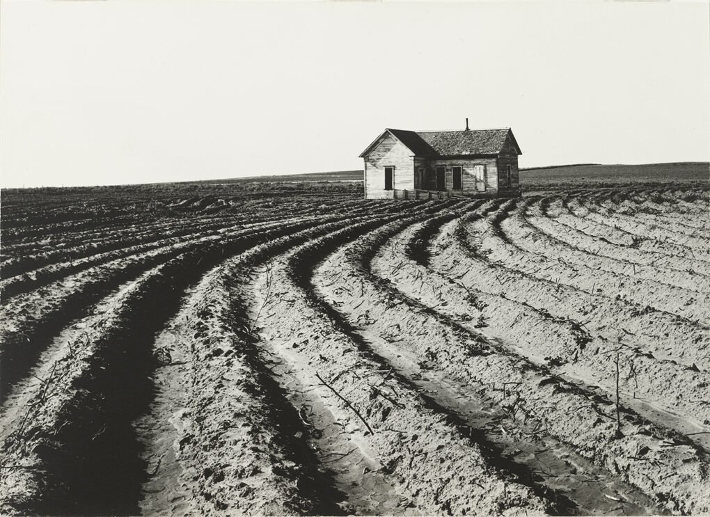 Dorothea Lange, Tractored Out, Childress County, Texas.